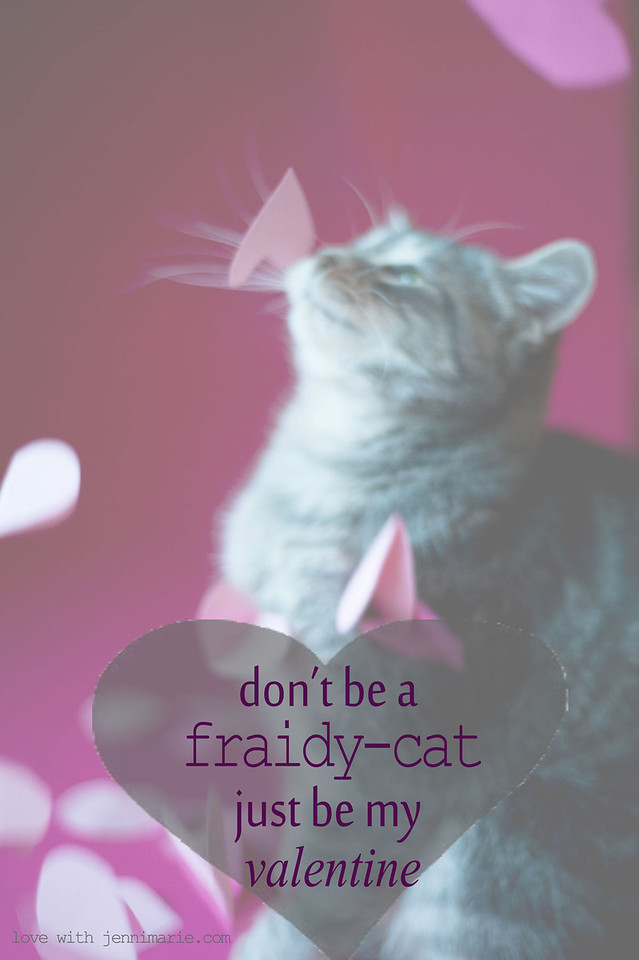 don't be a fraidy cat. be my valentine.